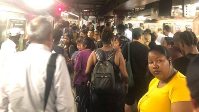 MTA informa que servicio de trenes ya fue reestablecido