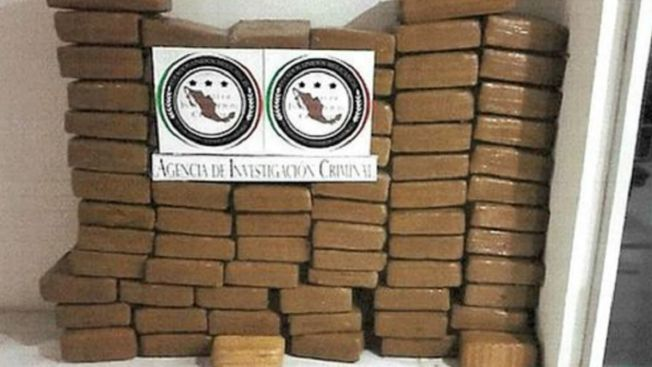 Decomisan 370 kilos de marihuana en Coahuila