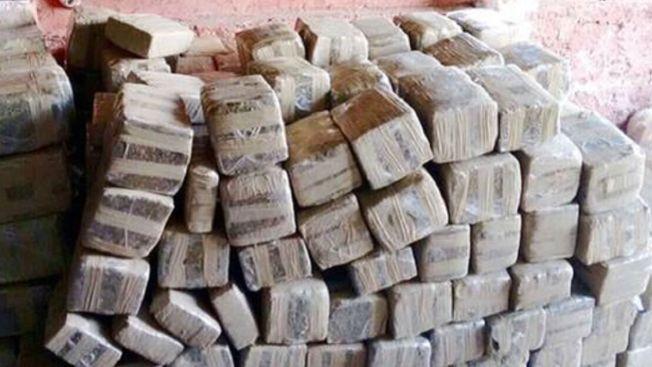 Aseguran más de una tonelada de droga en Jalisco