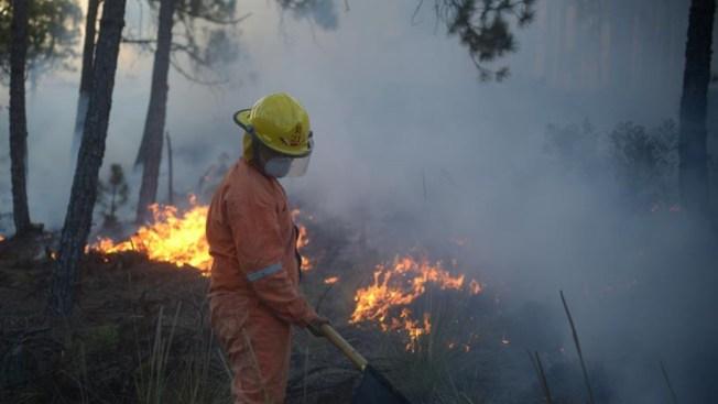 Incendios devastan reservas naturales en el sureste