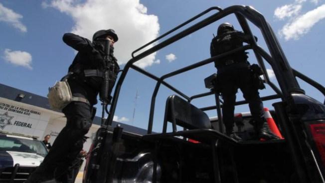 La Policía Federal, un cuerpo con los días contados