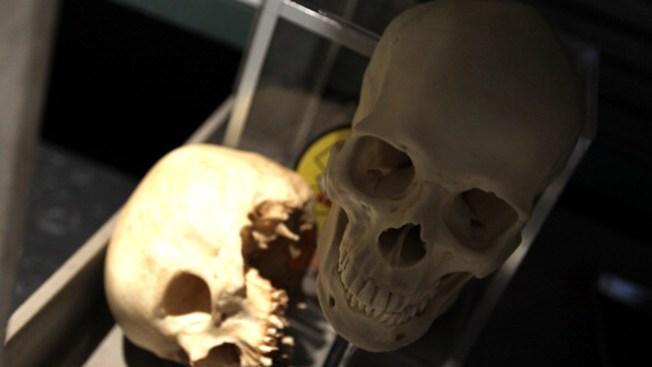 Aumenta culto a la Santa Muerte