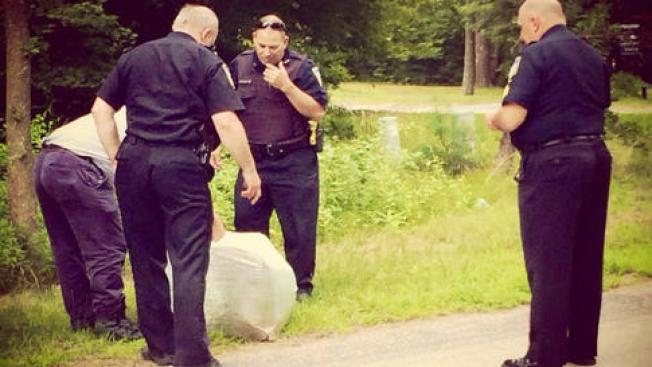 Un arresto en conexión a restos hallados