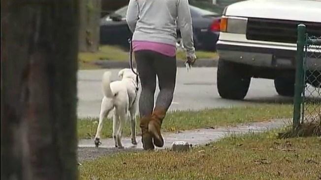 Heroína canina frustra ataque sexual