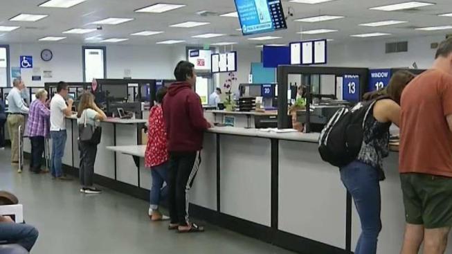 Emisión del Real ID podría causar caos en el DMV