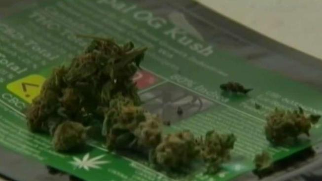 Medida Q permitiría dispensarios de marihuana en Chula Vista