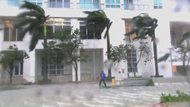 Grupo de habitantes de Florida saquean tienda tras el paso de Irma